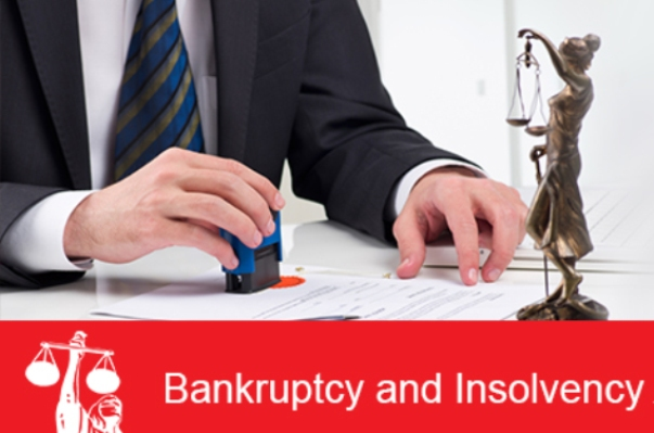 Difference Between Insolvency and Bankruptcy