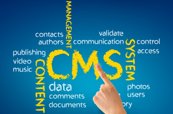 Why CMS Solutions Are Important In A Law Setting